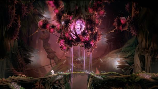 Der Ginsobaum – hier das Herz – ist mit spitzen Dornen überwuchert. (Quelle: eigener Screenshot)