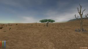 Die Alik'r-Wüste kennen Jüngere aus Elder Scrolls Online, sie existierte aber auch schon in Daggerfall. Mit dem Distant-Terrain-Mod kommt ihre Weite besser zur Geltung.